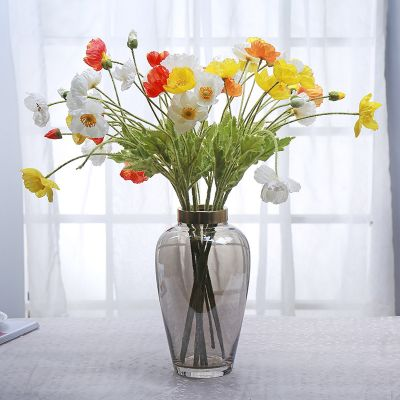 Modern Minimalist Transparent Decorative Glass Vase With Flowers Creative Fashion Home Living Room Dining Room Decoration
